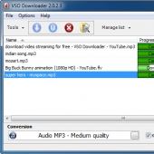 Video Downloader by VSO 1.2.0.78 screenshot